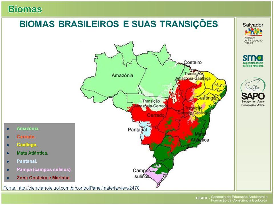 Amazônia. Cerrado. Caatinga. Mata Atlântica. Pantanal. Pampa (campos sulinos). Zona Costeira e Marinha. BIOMAS BRASILEIROS E SUAS TRANSIÇÕES Fonte: ht