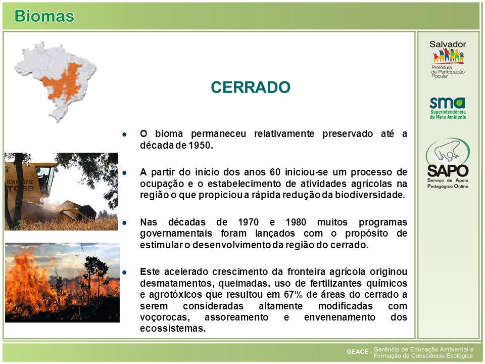 O bioma permaneceu relativamente preservado até a década de 1950. A partir do início dos anos 60 iniciou-se um processo de ocupação e o estabeleciment