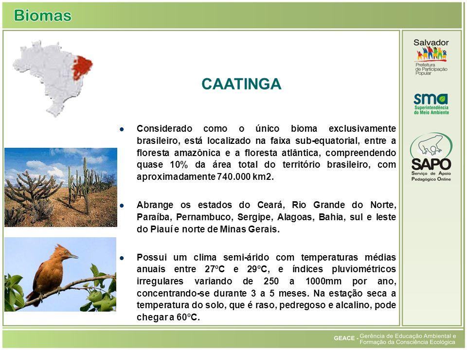 Considerado como o único bioma exclusivamente brasileiro, está localizado na faixa sub-equatorial, entre a floresta amazônica e a floresta atlântica,