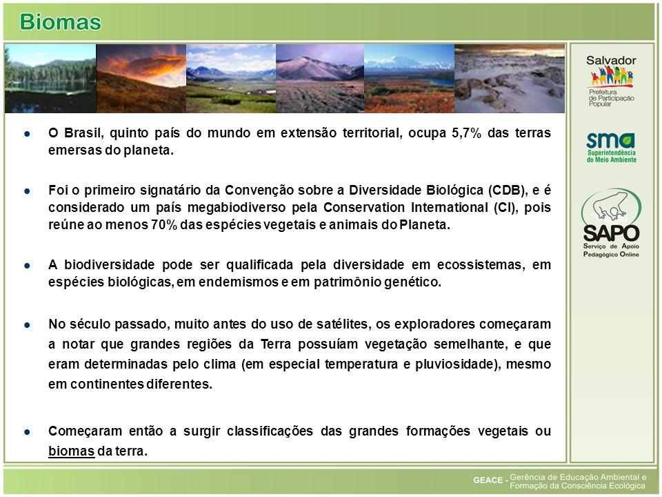 O Brasil, quinto país do mundo em extensão territorial, ocupa 5,7% das terras emersas do planeta. Foi o primeiro signatário da Convenção sobre a Diver