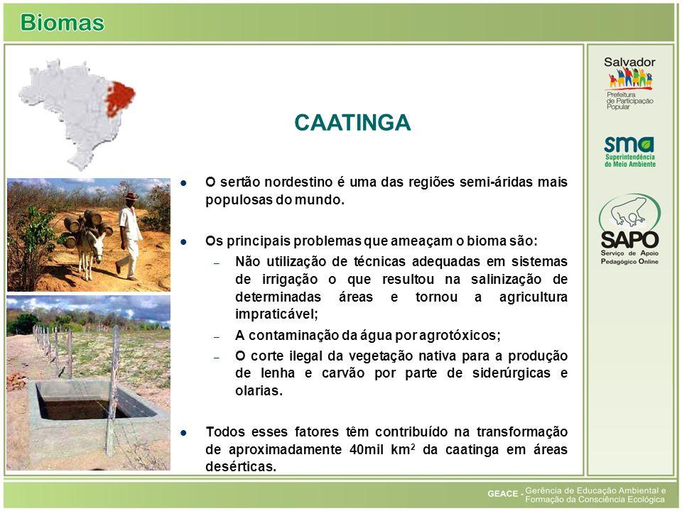O sertão nordestino é uma das regiões semi-áridas mais populosas do mundo. Os principais problemas que ameaçam o bioma são: – Não utilização de técnic