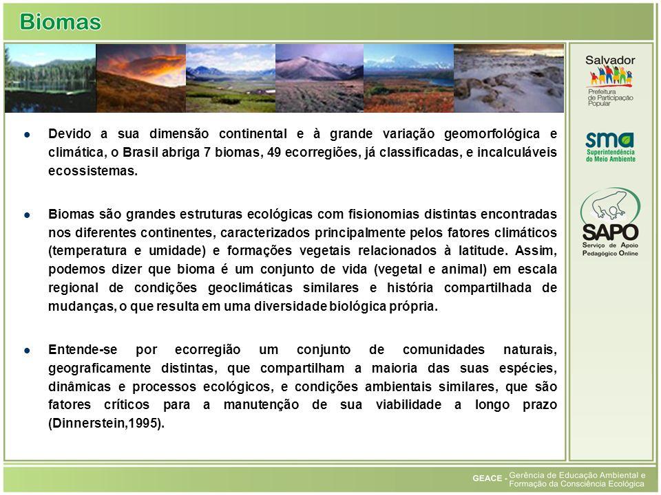 Devido a sua dimensão continental e à grande variação geomorfológica e climática, o Brasil abriga 7 biomas, 49 ecorregiões, já classificadas, e incalc