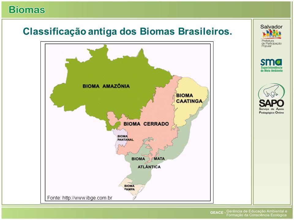 Classificação antiga dos Biomas Brasileiros. Fonte: http://www.ibge.com.br Classificação antiga dos Biomas Brasileiros