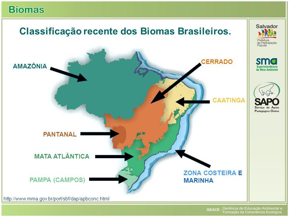 Classificação recente dos Biomas Brasileiros. AMAZÔNIA PANTANAL MATA ATLÂNTICA PAMPA (CAMPOS) ZONA COSTEIRA E MARINHA CAATINGA CERRADO http://www.mma.