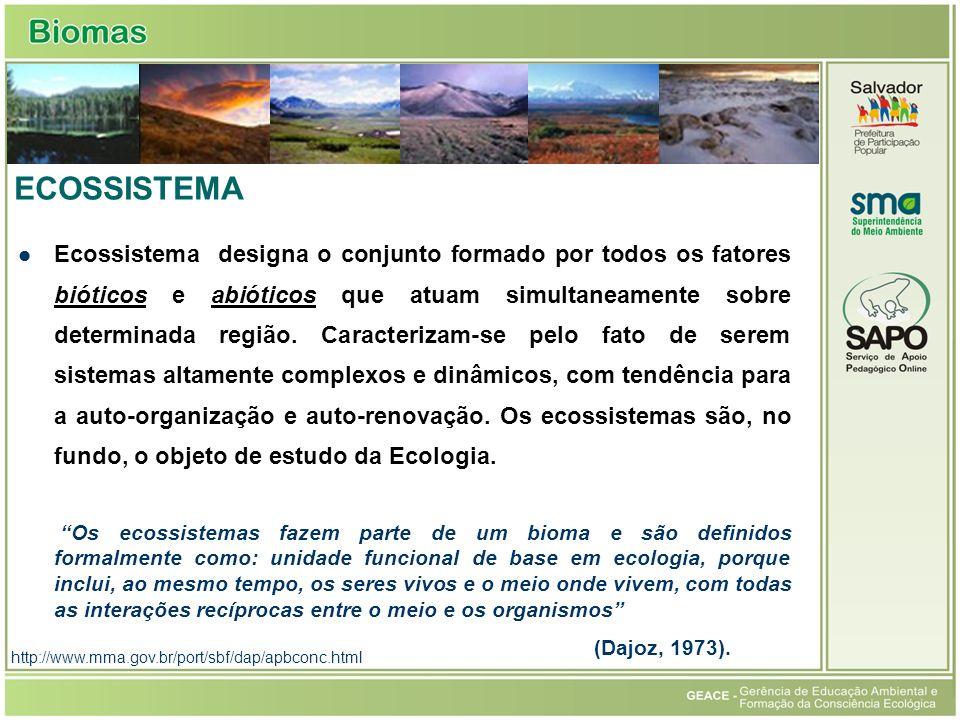 http://www.mma.gov.br/port/sbf/dap/apbconc.html ECOSSISTEMA Ecossistema designa o conjunto formado por todos os fatores bióticos e abióticos que atuam