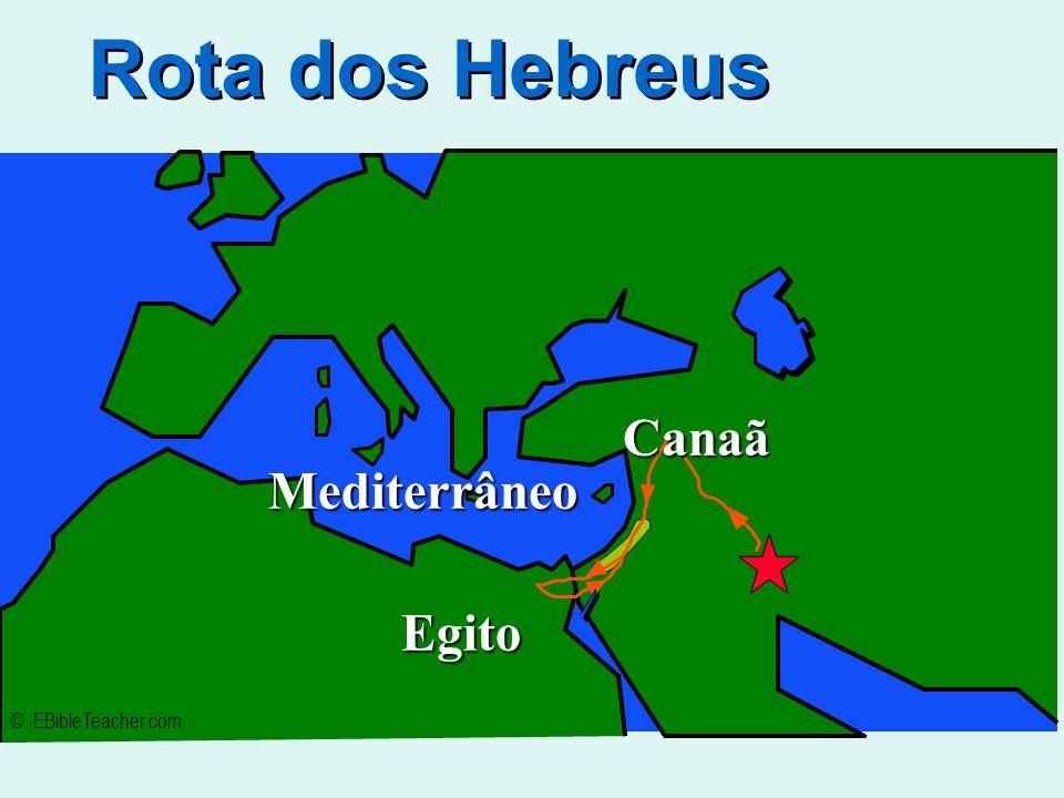 Os hebreus tiveram uma história de migração, lutas, fugas e cativeiros, mas procuravam e conseguiram preservar sua cultura. A civilização hebraica, fo