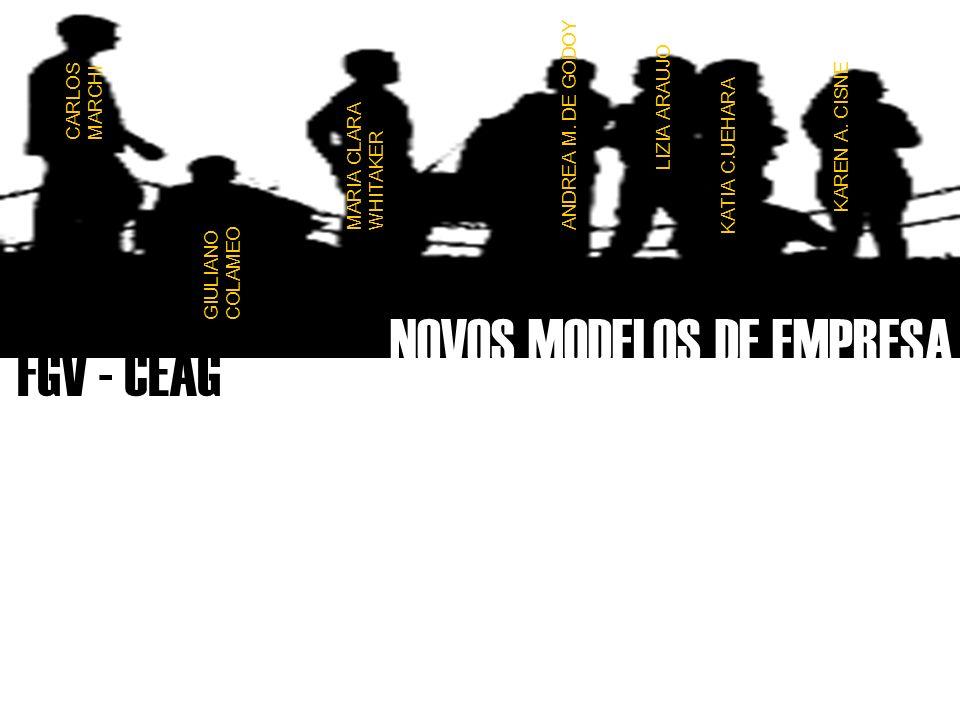FGV - CEAG NOVOS MODELOS DE EMPRESA ANDREA M.