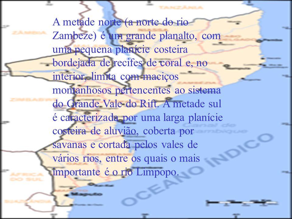 A metade norte (a norte do rio Zambeze) é um grande planalto, com uma pequena planície costeira bordejada de recifes de coral e, no interior, limita c