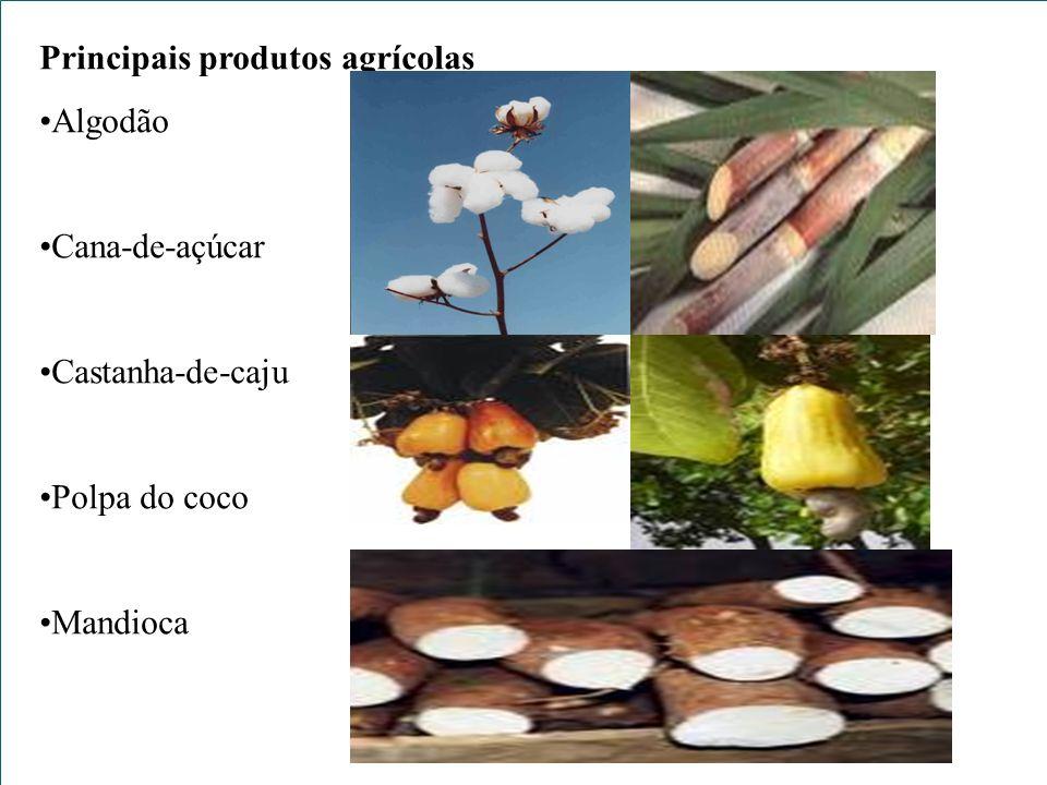Principais produtos agrícolas Algodão Cana-de-açúcar Castanha-de-caju Polpa do coco Mandioca