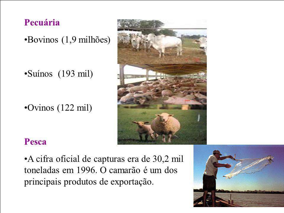Pecuária Bovinos (1,9 milhões) Suínos (193 mil) Ovinos (122 mil) Pesca A cifra oficial de capturas era de 30,2 mil toneladas em 1996. O camarão é um d