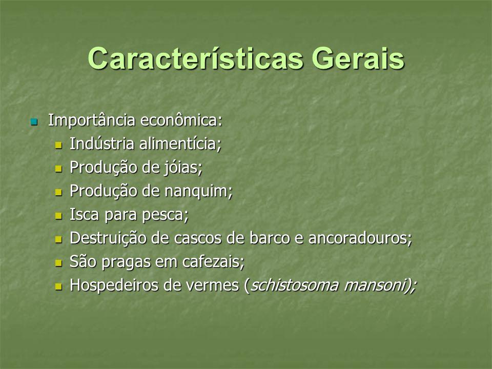 Características Gerais Importância econômica: Importância econômica: Indústria alimentícia; Indústria alimentícia; Produção de jóias; Produção de jóia