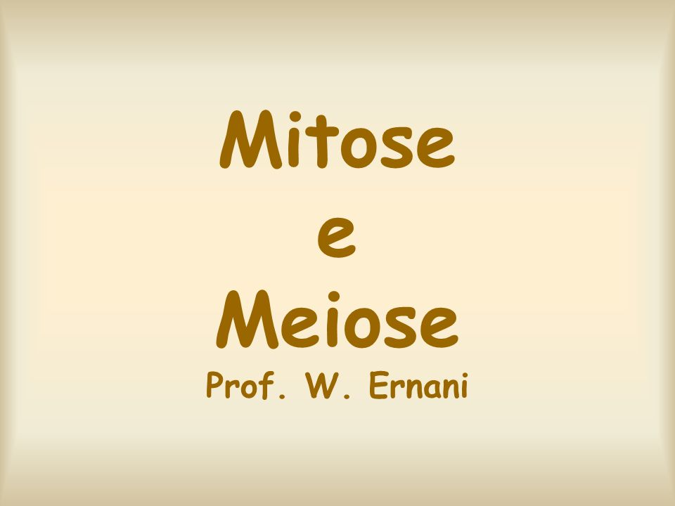 Mitose e Meiose Prof. W. Ernani