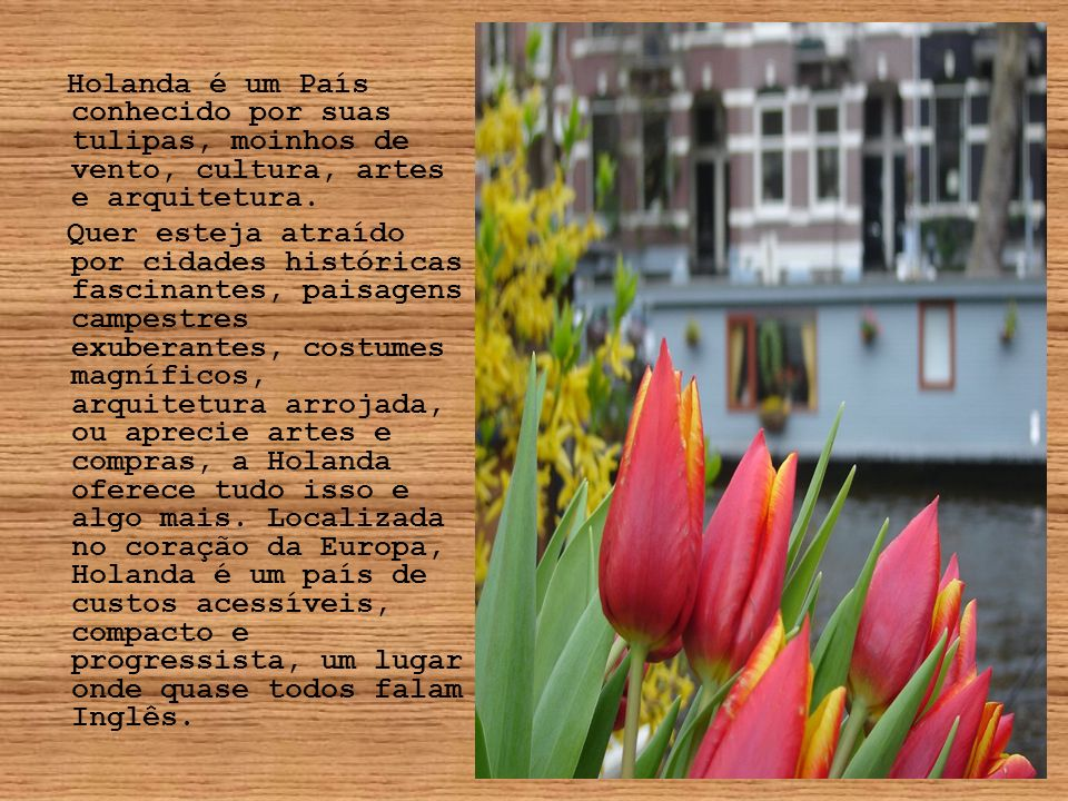 Holanda é um País conhecido por suas tulipas, moinhos de vento, cultura, artes e arquitetura. Quer esteja atraído por cidades históricas fascinantes,