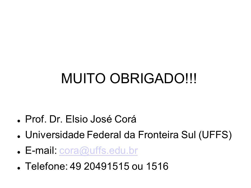 MUITO OBRIGADO!!! Prof. Dr. Elsio José Corá Universidade Federal da Fronteira Sul (UFFS) E-mail: cora@uffs.edu.brcora@uffs.edu.br Telefone: 49 2049151