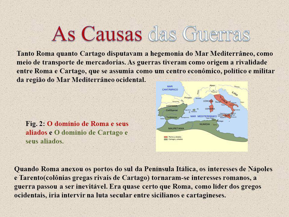 Tanto Roma quanto Cartago disputavam a hegemonia do Mar Mediterrâneo, como meio de transporte de mercadorias. As guerras tiveram como origem a rivalid