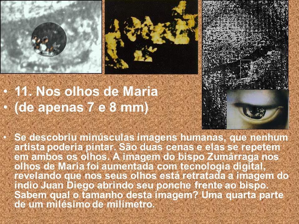 10. A ciência descobriu que os olhos de Maria possuem os três efeitos de refração da imagem de um olho humano.