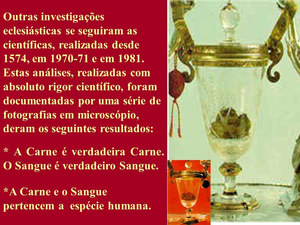 Outras investigações eclesiásticas se seguiram as científicas, realizadas desde 1574, em 1970-71 e em 1981. Estas análises, realizadas com absoluto ri
