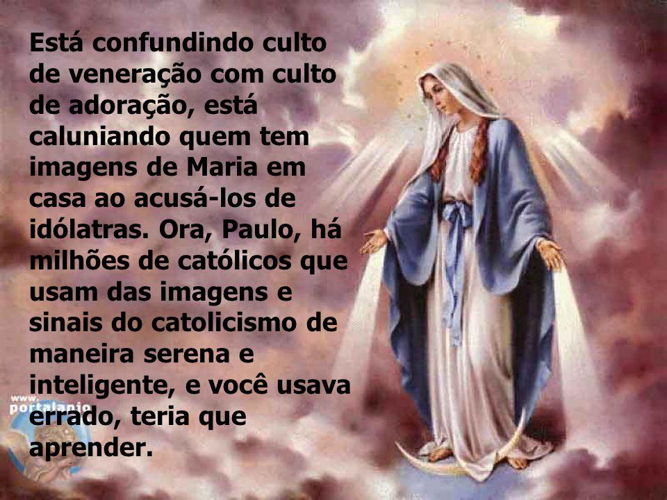 Quanto ao que você afirma, que nós adoramos Maria, sinto pena de você. Enquanto católico, segundo você afirma, já não sabia quase nada de bíblia por c