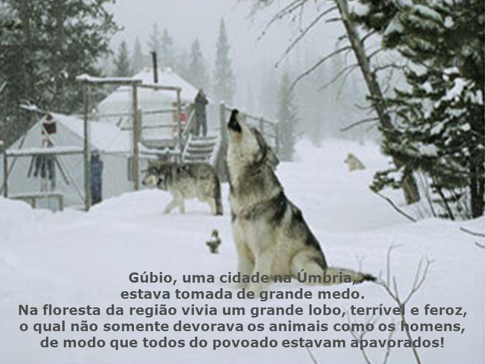 Gúbio, uma cidade na Úmbria, estava tomada de grande medo.