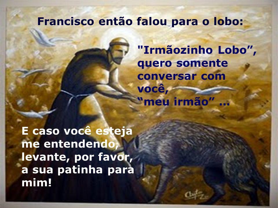 Francisco então falou para o lobo: Irmãozinho Lobo, quero somente conversar com você, meu irmão...