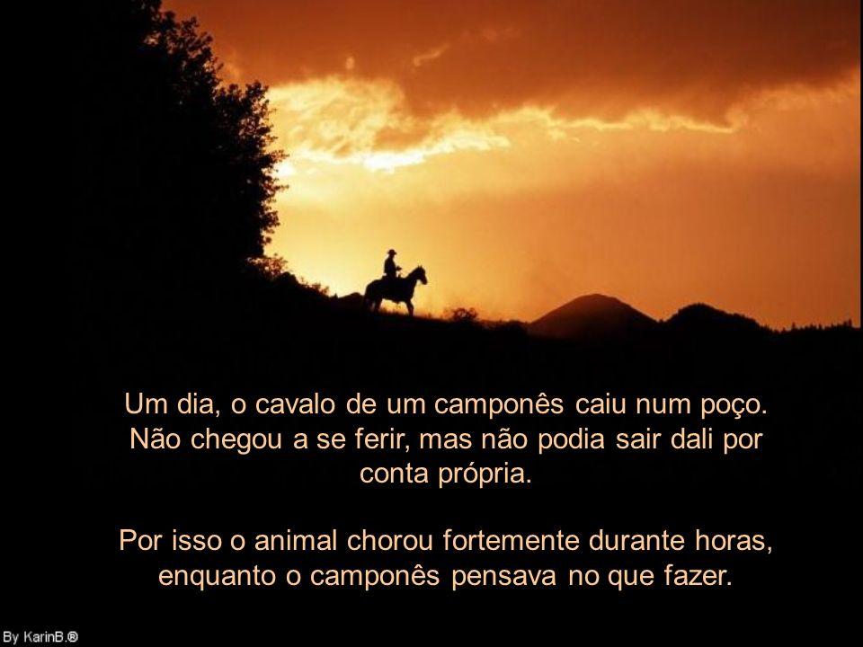Um dia, o cavalo de um camponês caiu num poço.