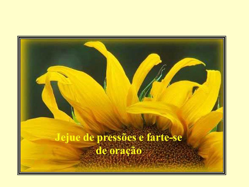 Jejue de pressões e farte-se de oração