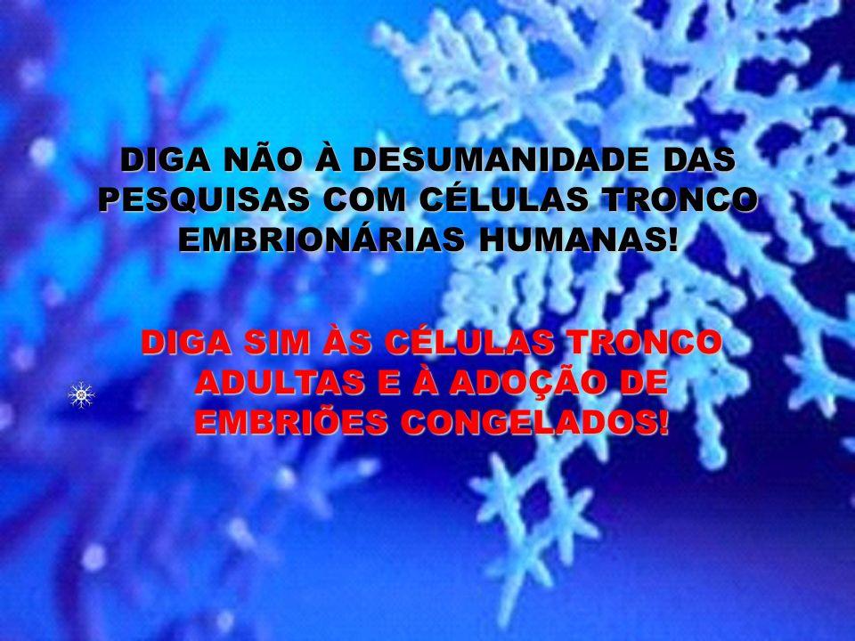 ESTAS FOTOS SÃO DE CRIANÇAS QUE FORAM EMBRIÕES CONGELADOS, ADOTADAS, DISPONÍVEL NO SÍTIO FLOCOS DE NEVE: http://www.nightlight.org/snowflakeadoption.h