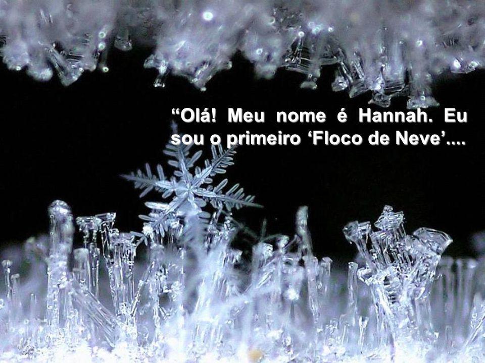 Olá! Meu nome é Hannah. Eu sou o primeiro Floco de Neve....