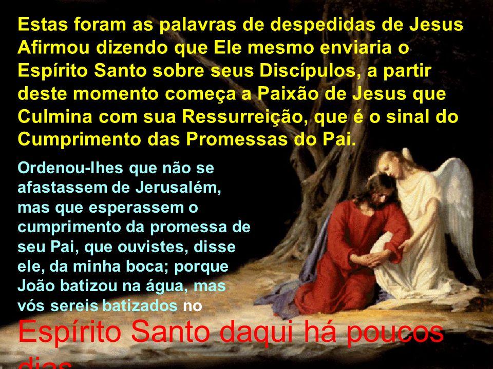 Estas foram as palavras de despedidas de Jesus Afirmou dizendo que Ele mesmo enviaria o Espírito Santo sobre seus Discípulos, a partir deste momento c