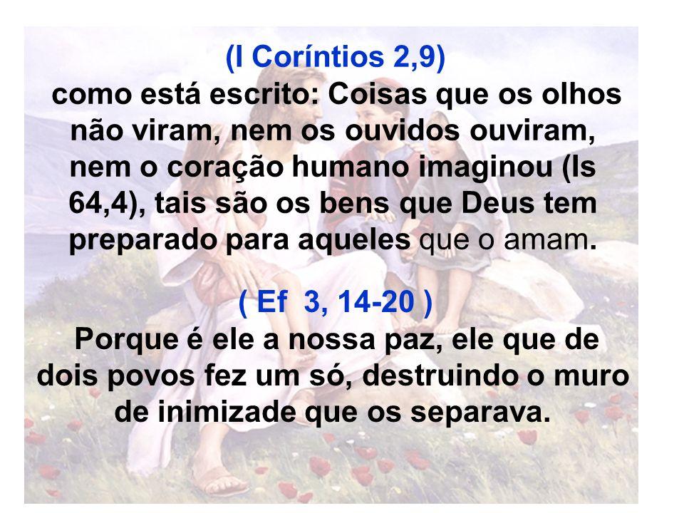 Deus continua falando sobre esta Promessa no antigo testamento Joel 3: Derramarei do meu Espírito sobre todo ser vivo.