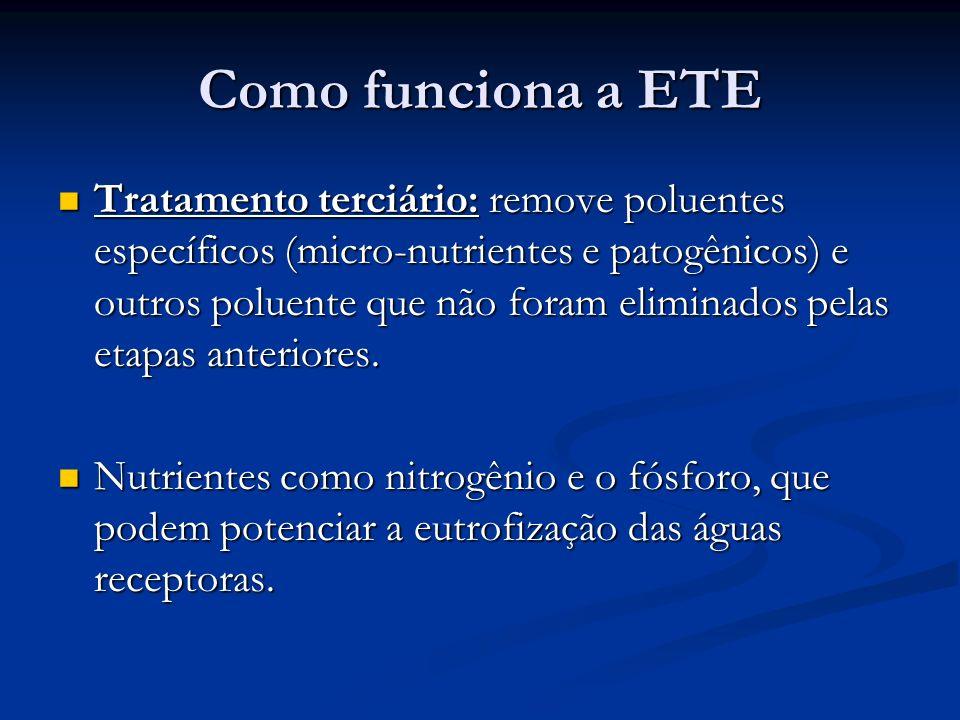 Como funciona a ETE Tratamento terciário: remove poluentes específicos (micro-nutrientes e patogênicos) e outros poluente que não foram eliminados pel