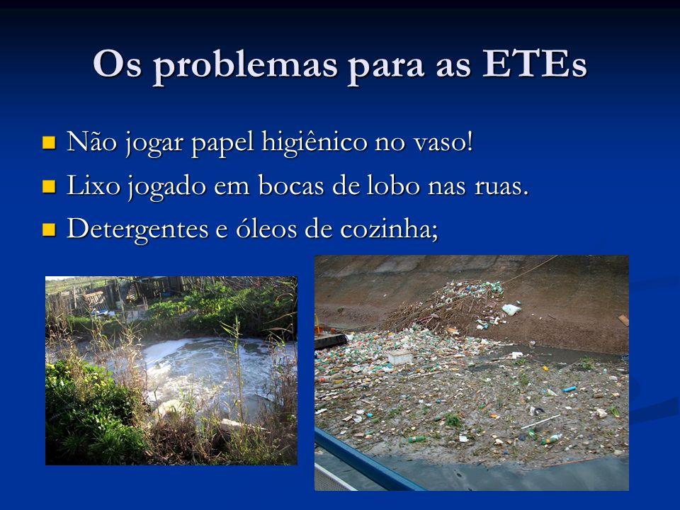 Os problemas para as ETEs Não jogar papel higiênico no vaso! Não jogar papel higiênico no vaso! Lixo jogado em bocas de lobo nas ruas. Lixo jogado em