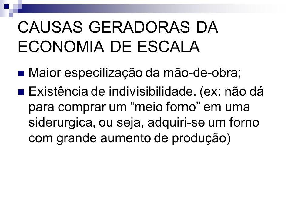 CAUSAS GERADORAS DA ECONOMIA DE ESCALA Maior especilização da mão-de-obra; Existência de indivisibilidade. (ex: não dá para comprar um meio forno em u