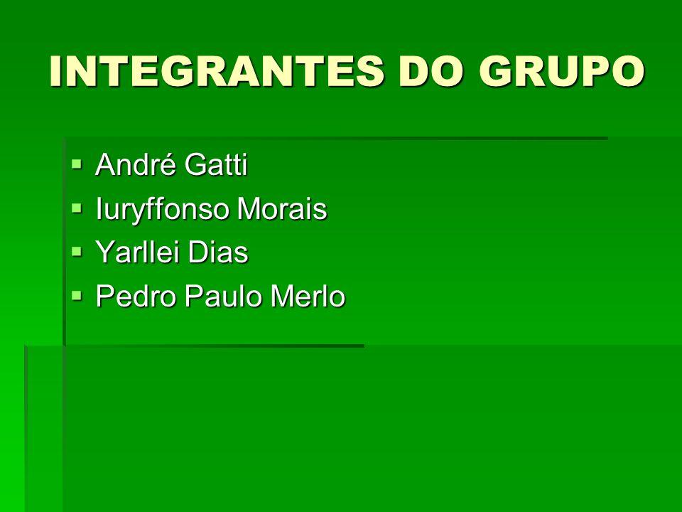 INTEGRANTES DO GRUPO André Gatti André Gatti Iuryffonso Morais Iuryffonso Morais Yarllei Dias Yarllei Dias Pedro Paulo Merlo Pedro Paulo Merlo