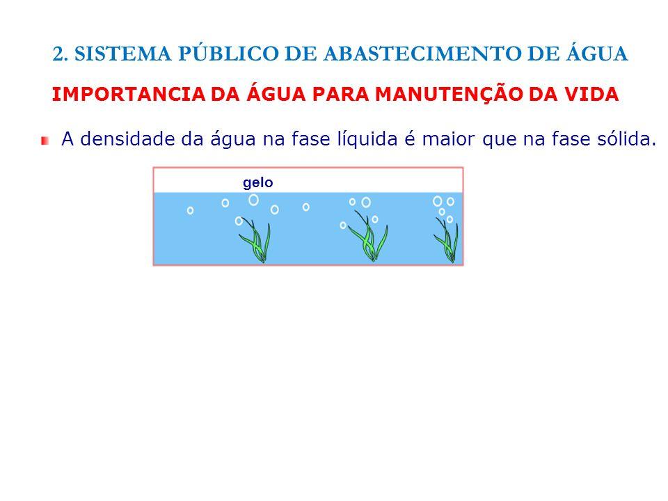 IMPORTANCIA DA ÁGUA PARA MANUTENÇÃO DA VIDA A densidade da água na fase líquida é maior que na fase sólida. gelo 2. SISTEMA PÚBLICO DE ABASTECIMENTO D