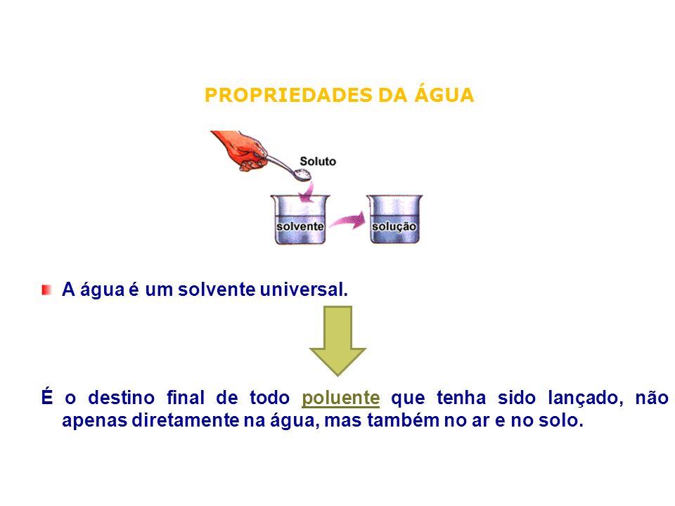 A água é um solvente universal. É o destino final de todo poluente que tenha sido lançado, não apenas diretamente na água, mas também no ar e no solo.