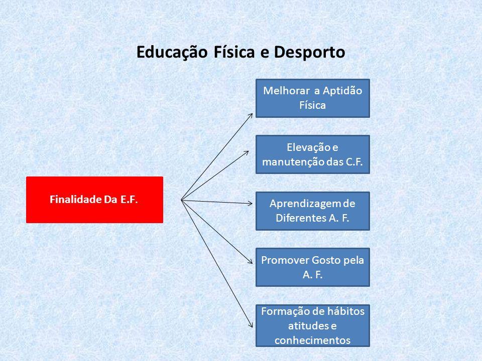 Educação Física e Desporto E.F.
