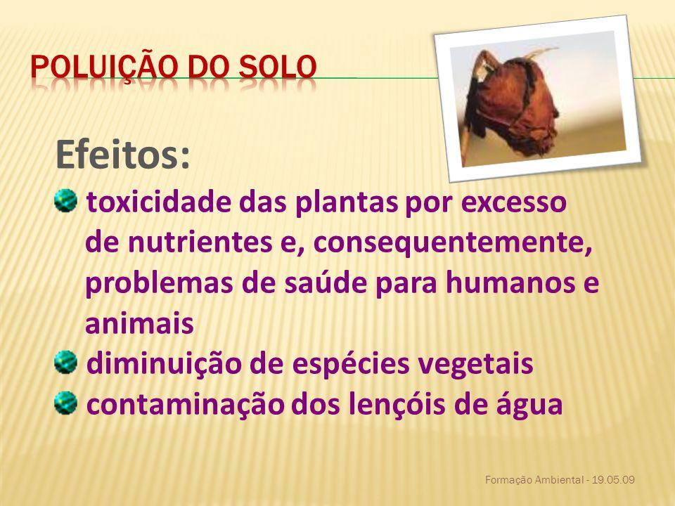 Formação Ambiental - 19.05.09 Efeitos: toxicidade das plantas por excesso de nutrientes e, consequentemente, problemas de saúde para humanos e animais