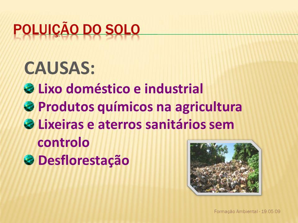 CAUSAS: Lixo doméstico e industrial Produtos químicos na agricultura Lixeiras e aterros sanitários sem controlo Desflorestação
