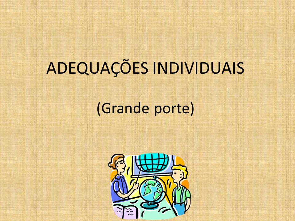 ADEQUAÇÕES INDIVIDUAIS (Grande porte)