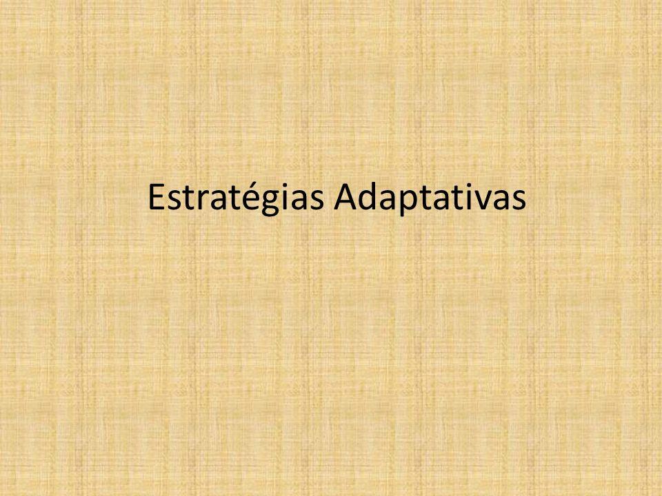 Estratégias Adaptativas
