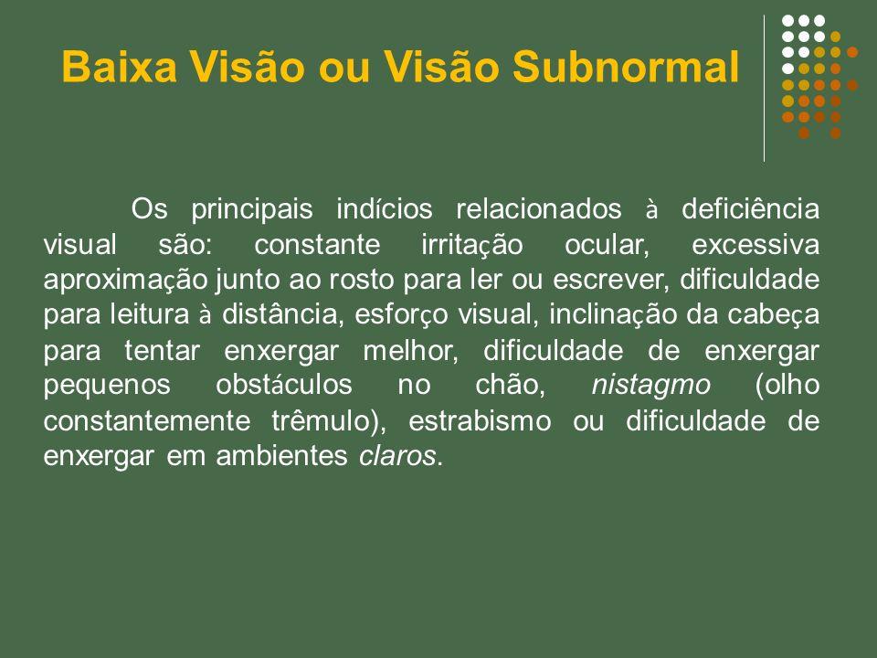 Os principais ind í cios relacionados à deficiência visual são: constante irrita ç ão ocular, excessiva aproxima ç ão junto ao rosto para ler ou escre