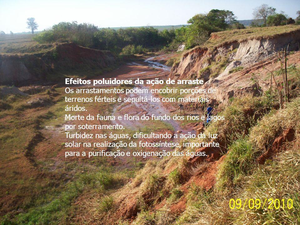 Efeitos poluidores da ação de arraste Os arrastamentos podem encobrir porções de terrenos férteis e sepultá-los com materiais áridos. Morte da fauna e