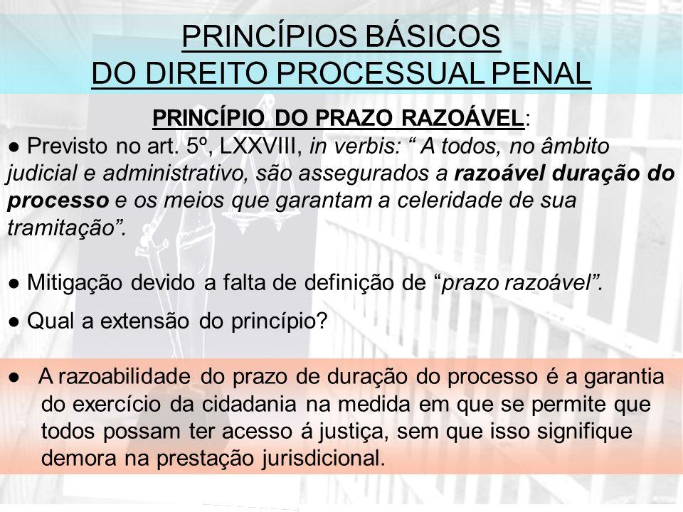 PRINCÍPIOS BÁSICOS DO DIREITO PROCESSUAL PENAL PRINCÍPIO DO PRAZO RAZOÁVEL: Previsto no art.