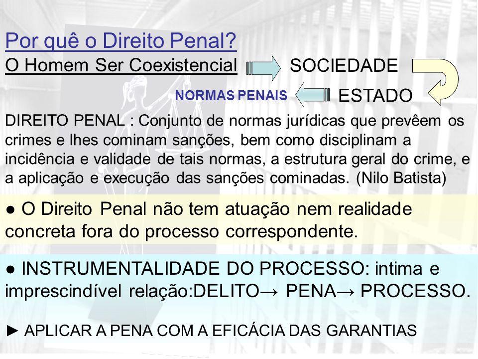 PRINCÍPIOS BÁSICOS DO DIREITO PROCESSUAL PENAL PRINCÍPIO DO DEVIDO PROCESSO LEGAL: Art.