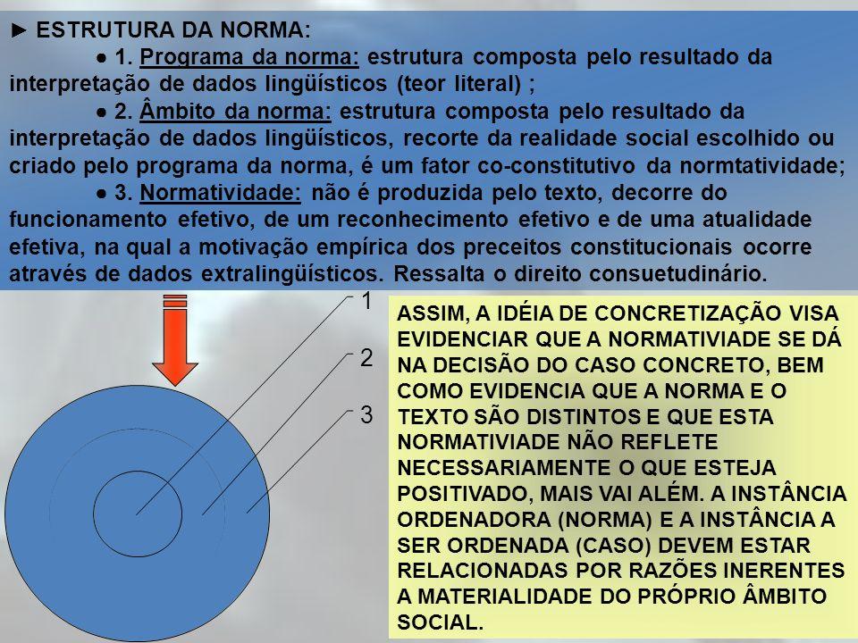 ESTRUTURA DA NORMA: 1. Programa da norma: estrutura composta pelo resultado da interpretação de dados lingüísticos (teor literal) ; 2. Âmbito da norma