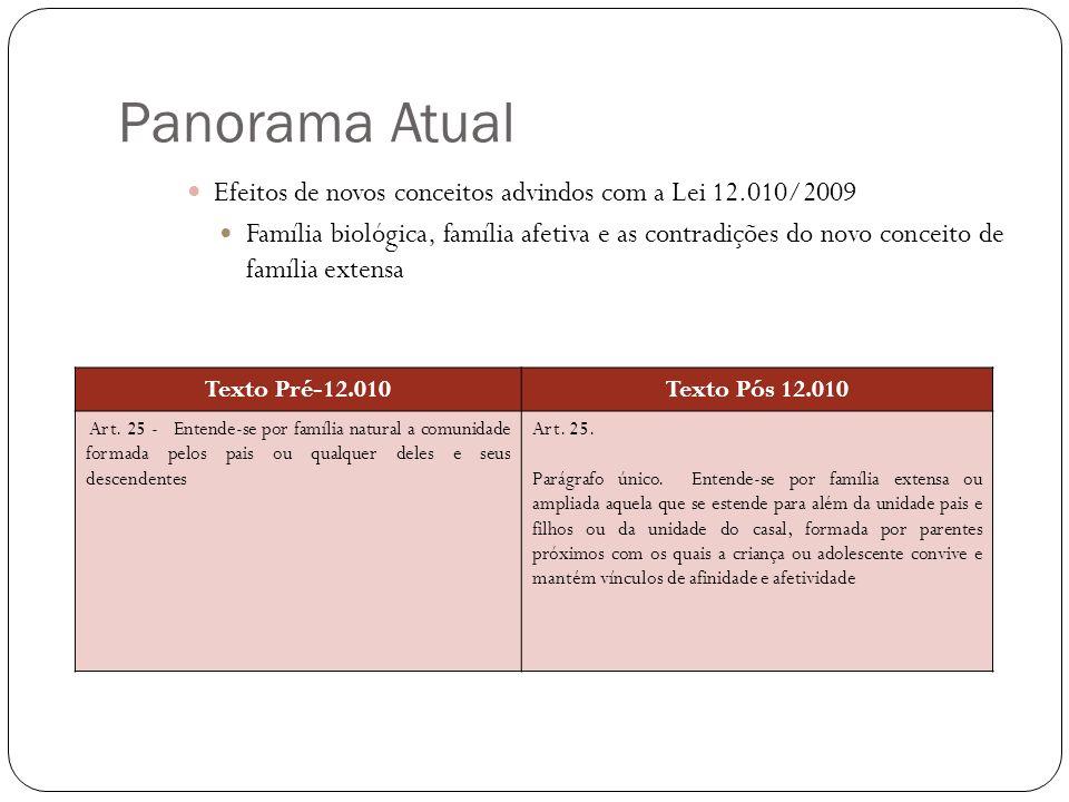 Panorama Atual Efeitos de novos conceitos advindos com a Lei 12.010/2009 Família biológica, família afetiva e as contradições do novo conceito de famí