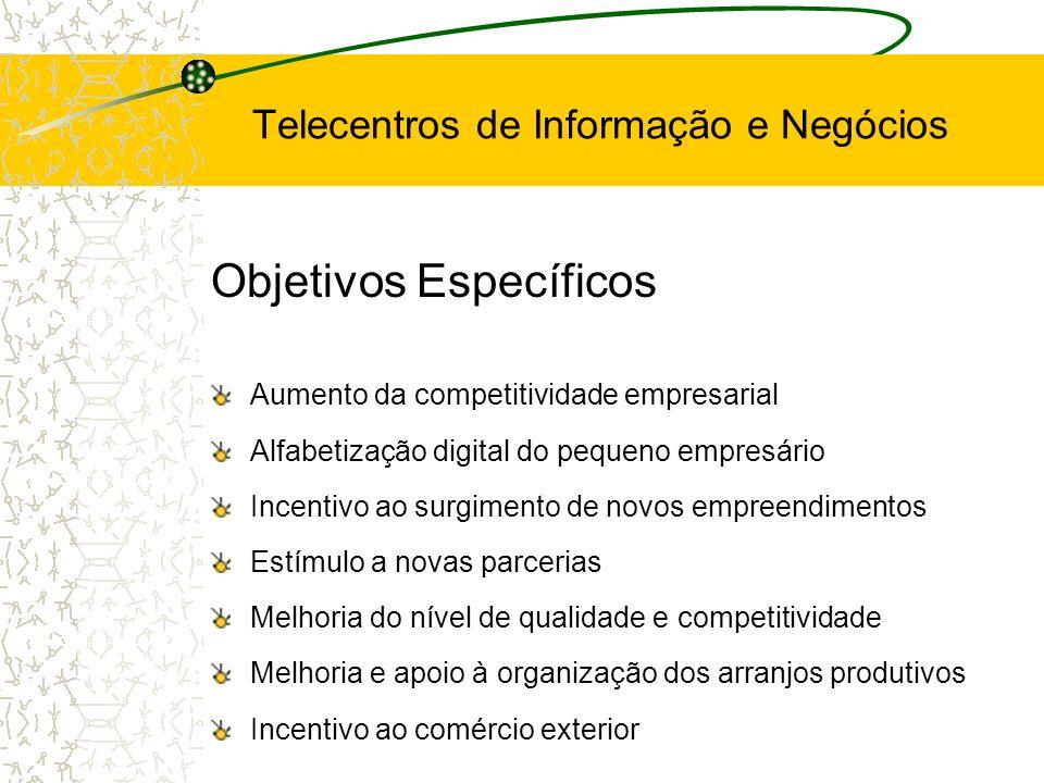 Objetivos Específicos Aumento da competitividade empresarial Alfabetização digital do pequeno empresário Incentivo ao surgimento de novos empreendimen