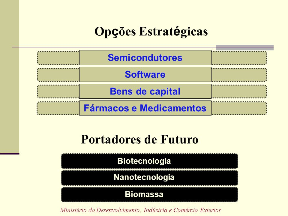 Semicondutores Software Fármacos e Medicamentos Bens de capital Nanotecnologia Biotecnologia Biomassa Op ç ões Estrat é gicas Portadores de Futuro