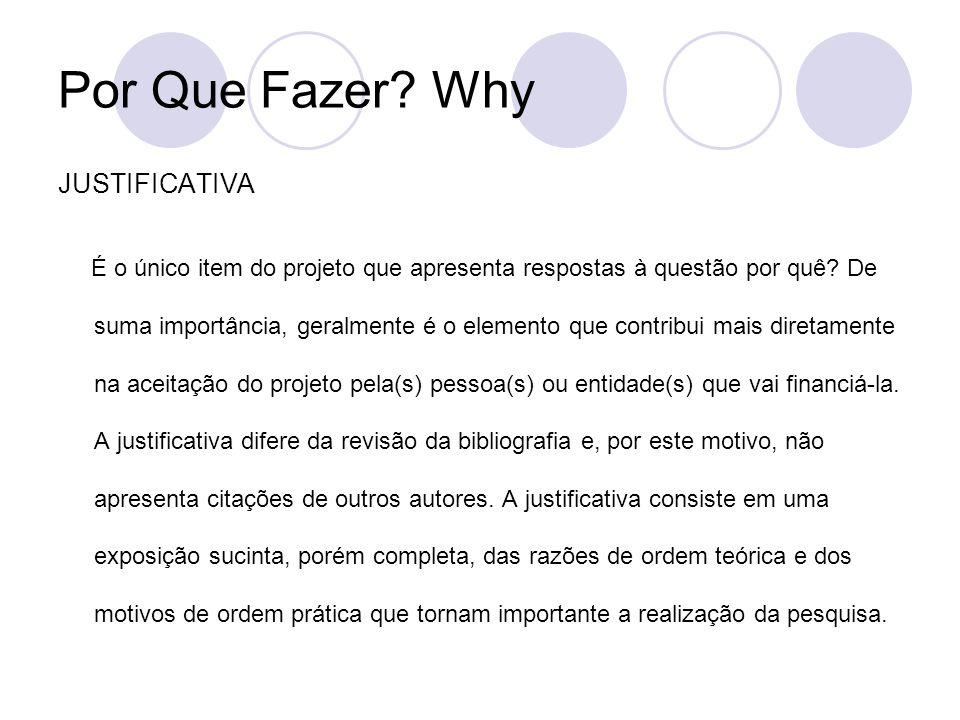 Por Que Fazer? Why JUSTIFICATIVA É o único item do projeto que apresenta respostas à questão por quê? De suma importância, geralmente é o elemento que
